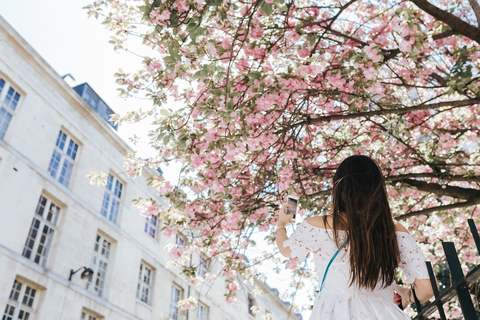meet me in paree, blogger, fashion, look, style, paris, parisian style, summer style, chiicwish