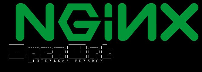 Adding SSL to NGINX on OpenWRT Chaos Calmer 15 05 1 | Life