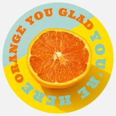 circular citrus sticker Sticker
