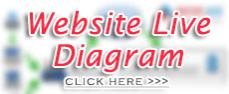 Website ta.com.my - Visual Diagram